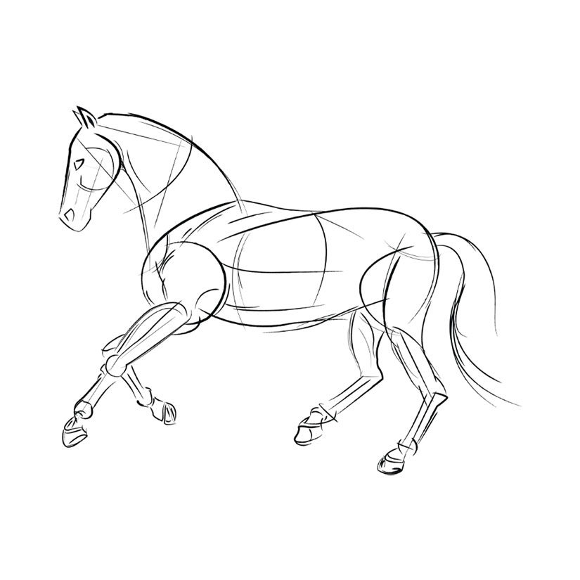 Martingale fork soft leather, closed